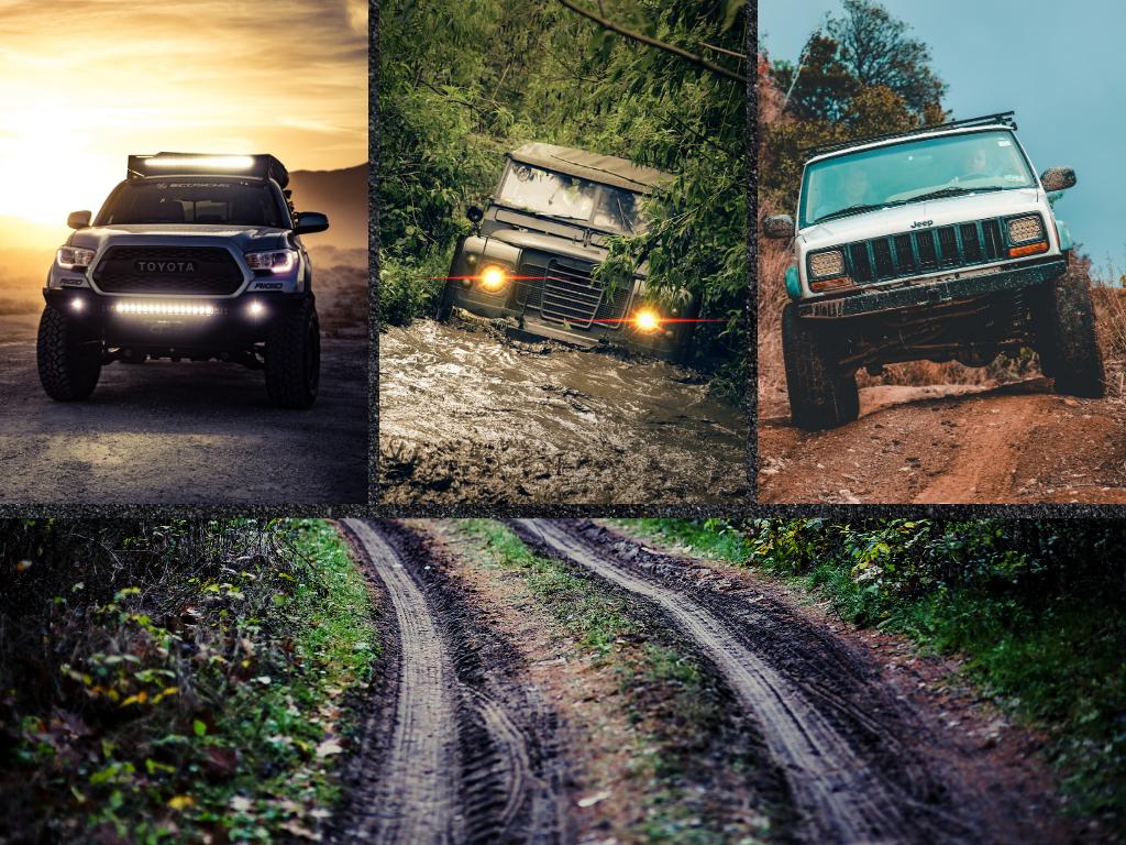 Czym do lasu, czyli wybór samochodu do polowań