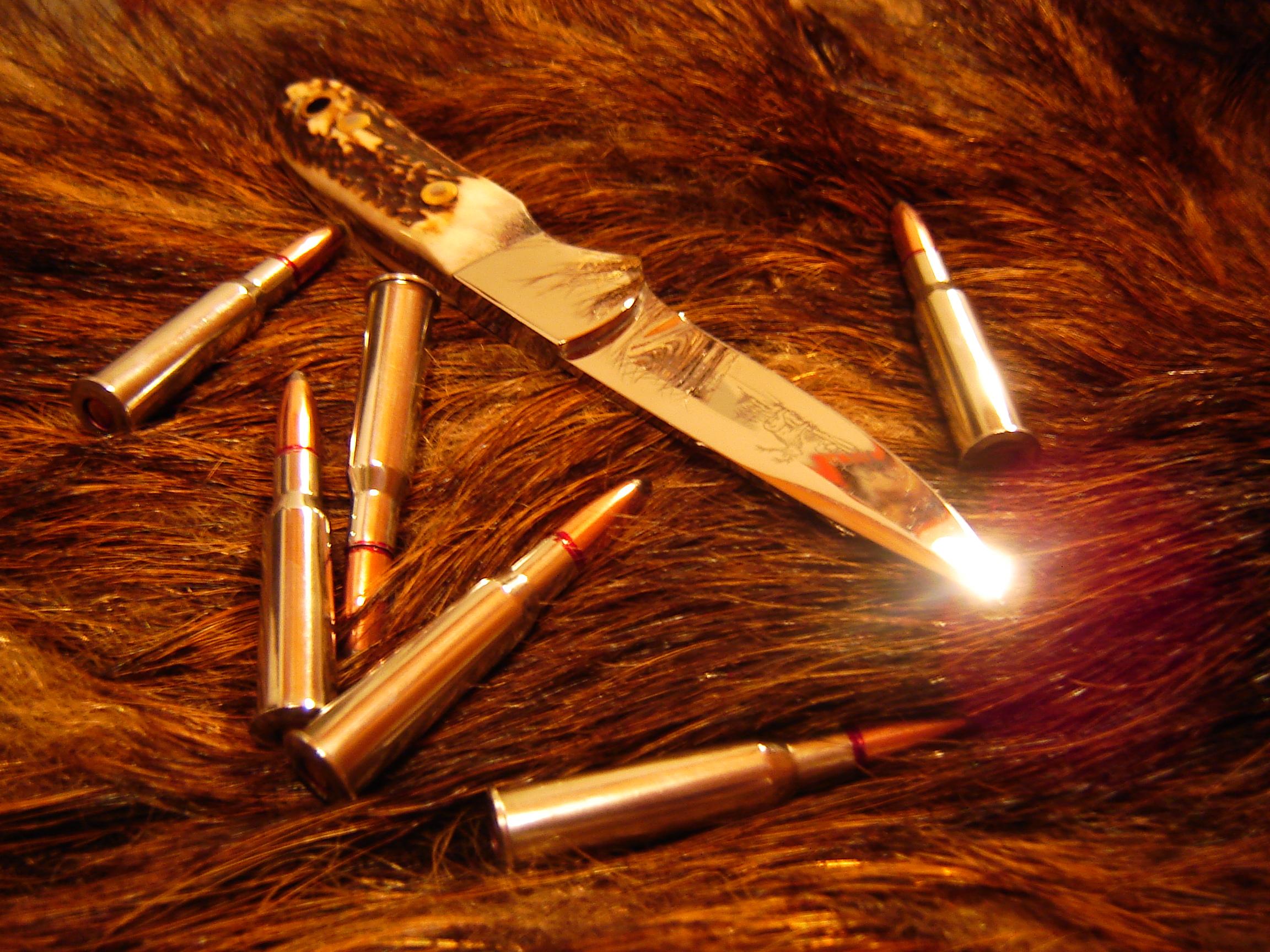 Przedwojenne oferty broni myśliwskiej w Moderne Waffen